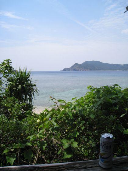 ダイビング 福岡 海
