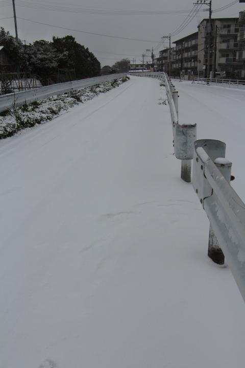 福岡市 雪