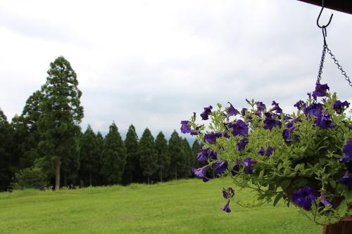 福岡,セミナー,自然の中のレストラン,我楽多結クラブ