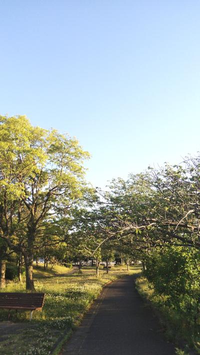 福岡市,集客,コンサルタント,西部運動公園