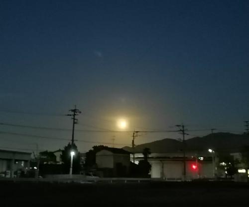 moonlight-500.jpg